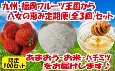 九州・福岡からお届け!八女の恵み定期便【全3回】 E