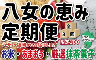 九州・福岡からお届け!八女の恵み定期便【全3回】G
