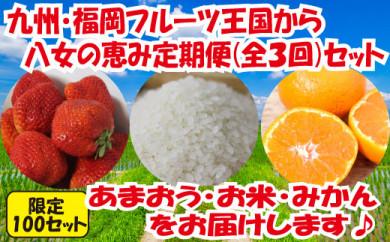 九州・福岡からお届け!八女の恵み定期便【全3回】 B
