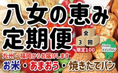 九州・福岡からお届け!八女の恵み定期便【全3回】H