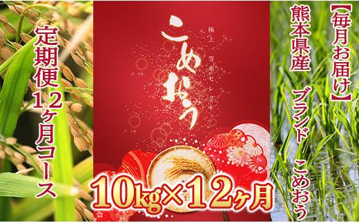 【毎月お届け】熊本県産 ブランド「こめおう」(森のくまさん) 精米10kg【定期便12ヶ月コース】