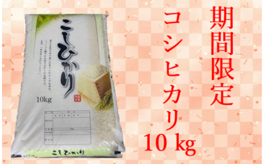 D203 期間限定コシヒカリ10kg