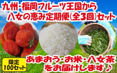 九州・福岡からお届け!八女の恵み定期便【全3回】 A