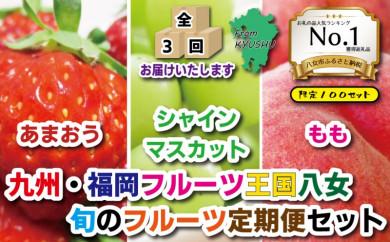九州・福岡フルーツ王国八女 旬のフルーツ定期便【全3回】 F