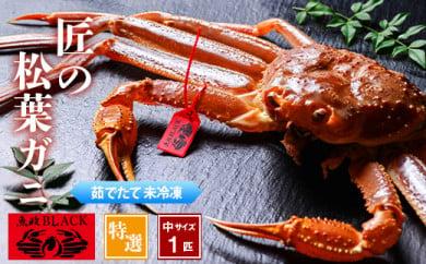匠の松葉ガニ 魚政BLACK 茹で特撰中サイズ 900g級1匹