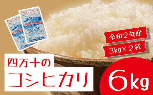 20-785.【数量限定・令和2年産】四万十市産「コシヒカリ」6kg