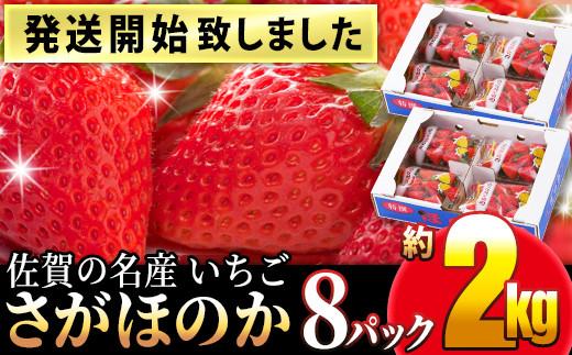 TKB5-058 【発送開始】佐賀の名産いちご さがほのか 8パック