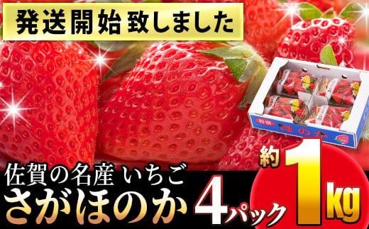 TKA9-018 【発送開始】佐賀の名産いちご さがほのか 4パック