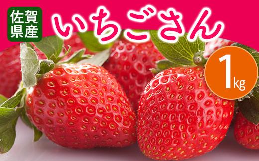 佐賀県産 いちごさん 1kg(250g×4P)
