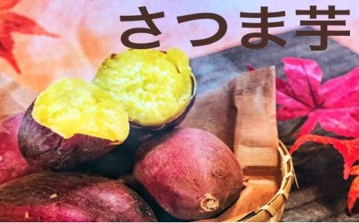 [№5904-0288]さつま芋(紅はるか)