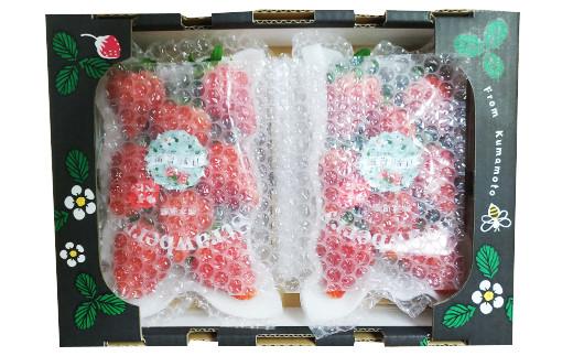 【12月上旬発送】相良村産いちご「ゆうべに」270g × 4P 日野農園