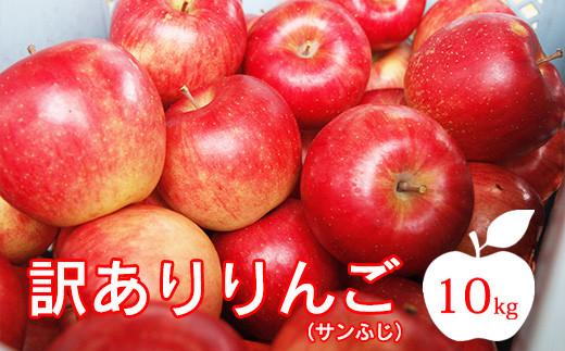 【先行受付】訳ありふぞろいりんご R3年産 10kg 11月中旬頃からお届け 2021年産