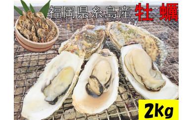 殻付き生食用福吉の牡蠣2kg【福岡県糸島産】