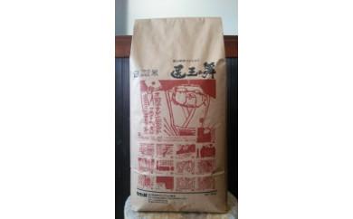 富山県産コシヒカリ『医王の舞』白米10kg