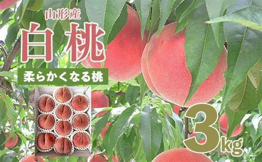 FS20-062 【令和3年産先行予約】山形市産桃[柔らかくなる桃] 秀3kg
