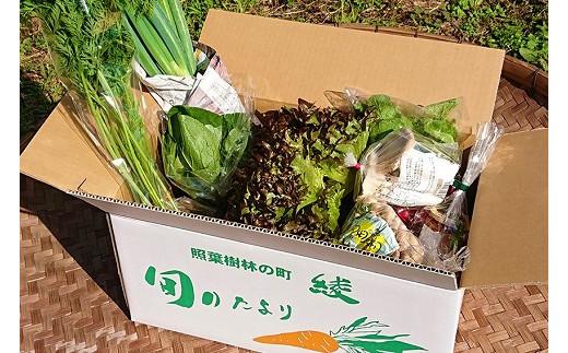 05-04_綾・早川農苑のこだわり野菜&ジャムセット