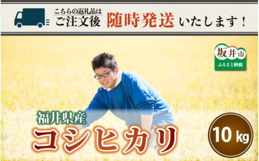 【令和2年産米】さんさん池見二代目が笑顔で育てたコシヒカリ 10kg ~福井県産 生産者直送!~ [A-0221]