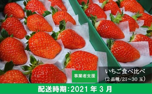 TK16-03 梶原フルーツのイチゴ食べ比べセット 3月お届け分