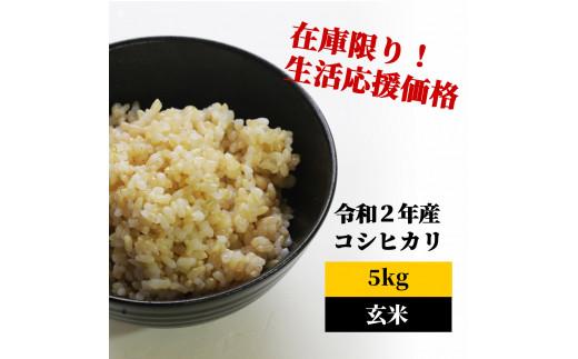 <令和2年産>K12 あわくら源流米 コシヒカリ 玄米5kg