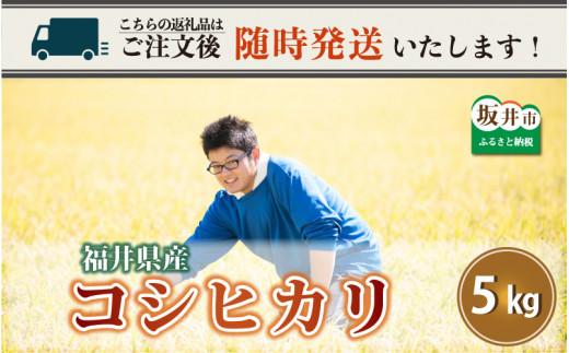 【令和2年産米】さんさん池見二代目が笑顔で育てた 福井県産 コシヒカリ お試し用 5kg [A-0210]