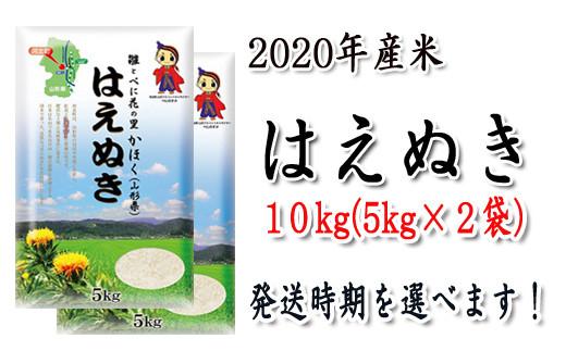 A-142【2020年(令和2年)産】山形県河北町産米はえぬき10kg(5kg×2袋)【JAさがえ西村山】