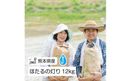 AG08 無洗米「ほたるの灯り」 熊本県産 12kg