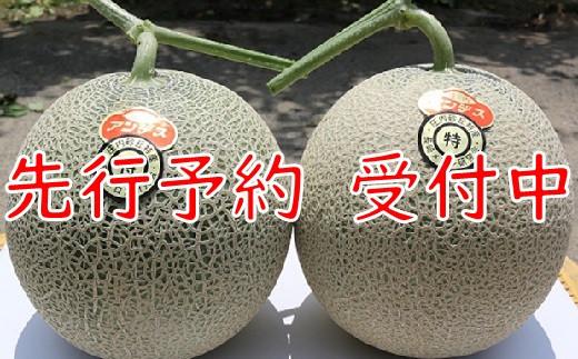【令和3年産先行予約】成澤さんの厳選!【2玉入】高糖度大玉メロン