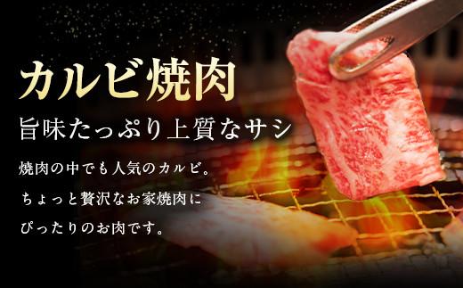 黒毛和牛 A4-5 カルビ 焼肉 300g×2パック 600g 冷凍