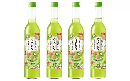 [№5765-0555]サッポロ ウメカク 果実仕立ての梅酒カクテル キウイ 4本(1本500ml)