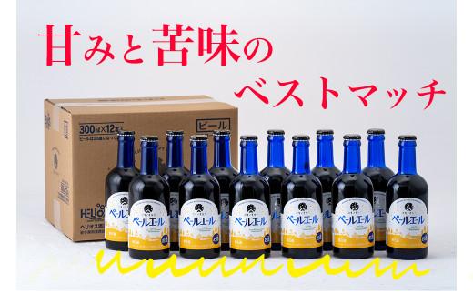 【 定期便 3ヶ月 】地ビール ユキノチカラ ペールエール 12本