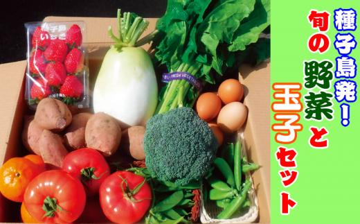 種子島発!旬の野菜と玉子セット 300pt NFN194