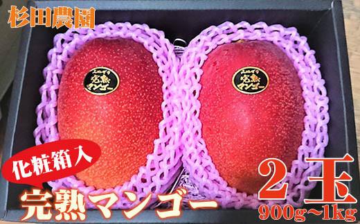 今が旬!杉田農園 西都市産 完熟マンゴー2玉 化粧箱入り<1.5-151>