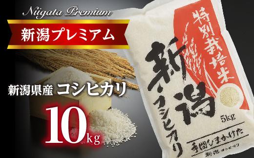 令和3年産 新潟プレミアム 特別栽培米 コシヒカリ 白米10kg FC015064