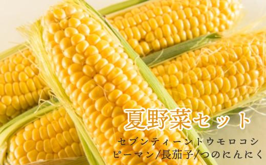 【R3年産先行受付】夏の野菜セット BBQ野菜(トウモロコシ、ピーマン、長茄子、つのにんにく)  7月~発送(2021年産)