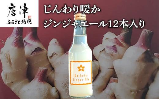 生姜濃縮 ジンジャエール 250ml×12本 生姜の味がギューッと1本に濃縮