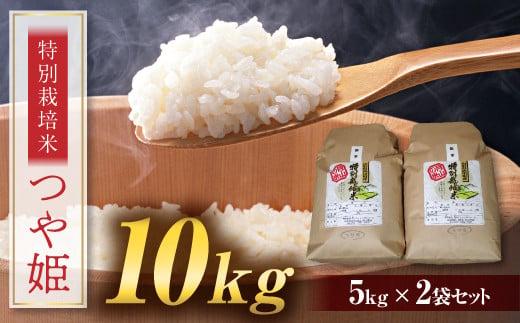 FYN9-110 【令和2年度産米】つや姫 10kg (5kg×2) 山形県西川町産