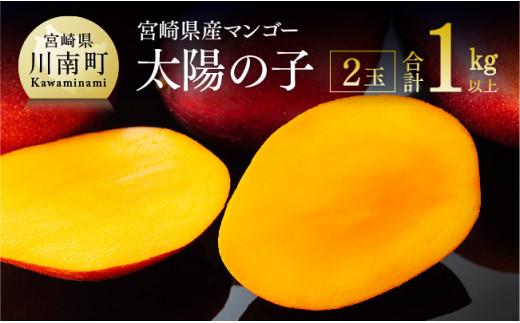 宮崎マンゴーの元祖!本場台湾で学んだ栽培方法を活かした「太陽の子」
