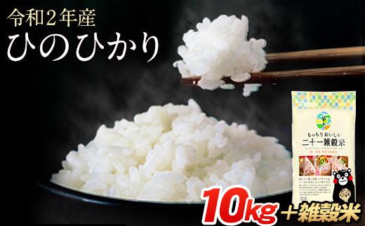 令和2年産 ひのひかり 10kg 熊本県産 白米10kg+国産雑穀米《3-7営業日以内に順次出荷(土日祝除く)》令和2年 精米 荒尾市