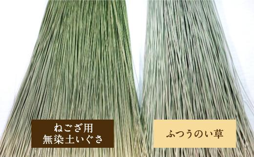 広幅 ねござ 幅107cm×長195cm 寝ござ い草