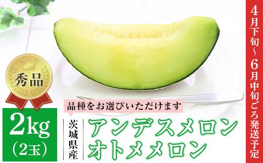 007茨城県産アンデスメロン・オトメメロン【秀品】2kg(2玉)