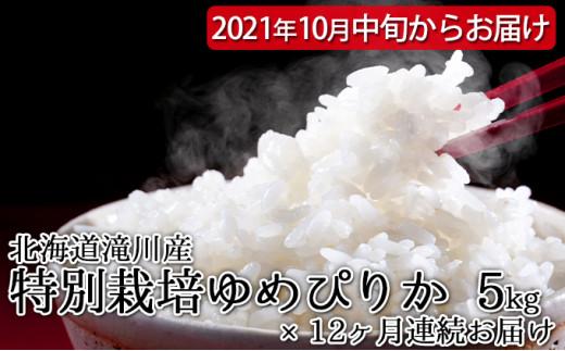 [№5641-1053]北海道滝川産 特別栽培ゆめぴりか 5kg 12ヶ月連続 ※2021年10月中旬・新米からお届け