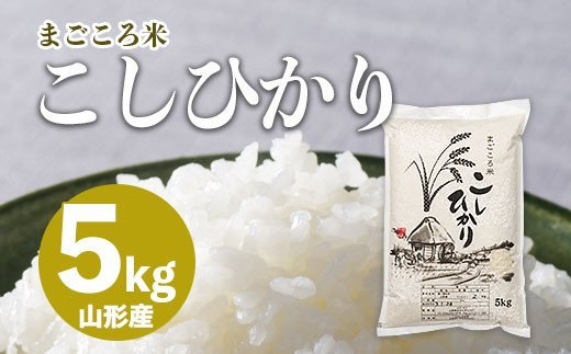 FY20-783 まごころ米こしひかり 5kg