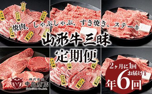 FY20-787 【定期便6回】山形牛三昧 焼肉用、しゃぶしゃぶ用、すき焼き用、ステーキ用定期便