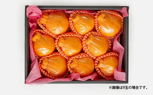 宇城市産 ハウス栽培 贈答用 不知火 3kg(約9~10玉)うちやま果樹園