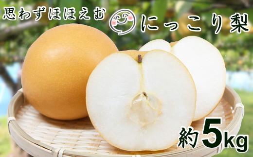 【数量限定!】思わず微笑む♪千葉県いすみ市のにっこり梨5kg A621