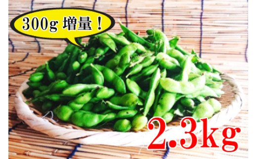 A01-654 【令和3年分先行予約】【今だけ300gおまけ付き!】殿やの特別栽培だだちゃ豆 2.3kg(500g×4袋+300g×1袋)枝豆