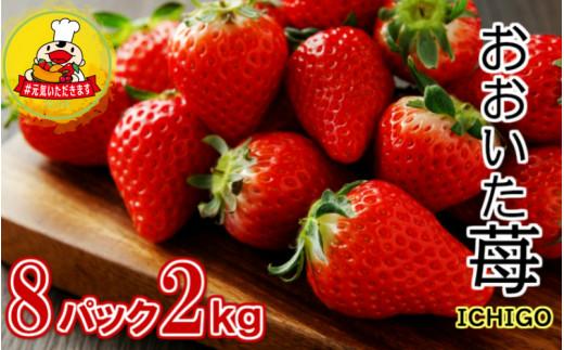 【3月1日から発送】大分県産いちご270g×8パック