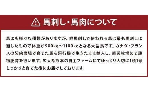 馬スジ 2kg 500g×4袋 加熱 ボイル済み 調理済 冷凍