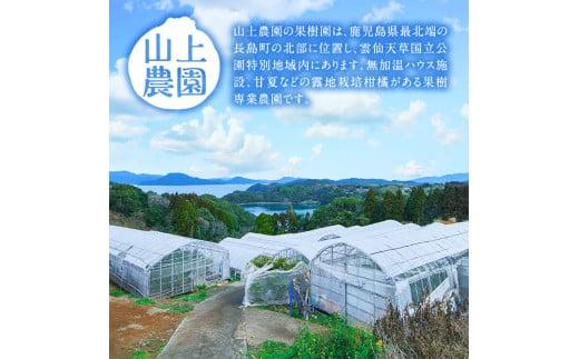 山上農園をご紹介!