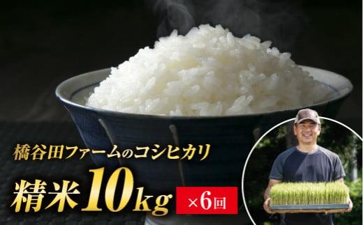 橋谷田ファームのコシヒカリ 精米10kg